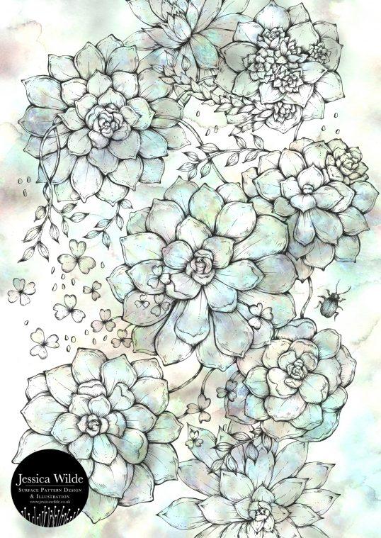 Succulent Botanical Illustration