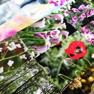 Nature Inspiration_Jessica Wilde