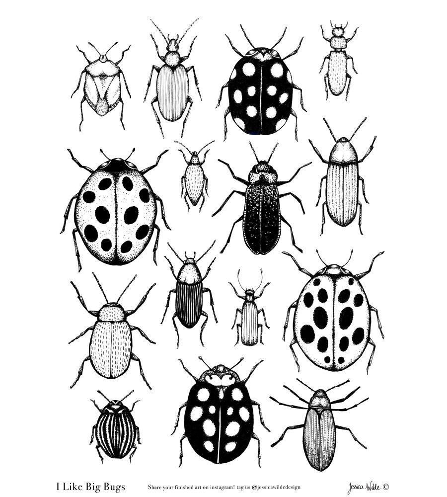 I Like Big Bugs Colouring Sheet